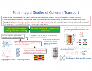 Slide image, path integral studies